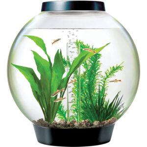 Bể cá mini biOrb Classic LED