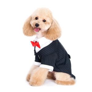 Bộ vest cho chó Alfie Pet Tuxedo