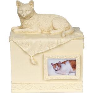 Hộp đựng tro cốt cho mèo AngelStar