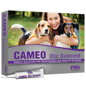 Thuốc nhỏ tai cho chó Cameo Otic Ointment