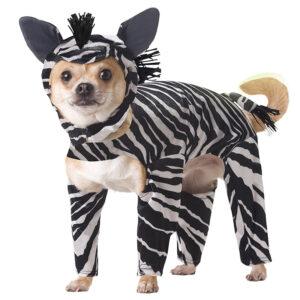 Quần áo cho chó California Costumes Zebra