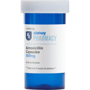 Thuốc điều trị nhiễm trùng ở chó mèo Amoxicillin (Generic)