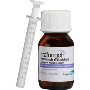 Thuốc trị bệnh nấm cho mèo Itrafungol Oral
