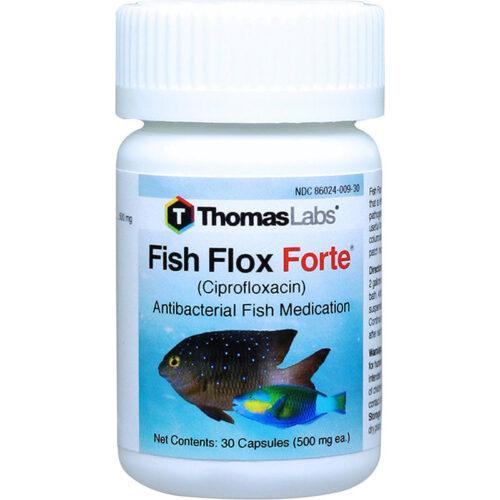 Thuốc cho cá kháng khuẩn Thomas Labs Fish Flox Forte Ciprofloxacin Antibacterial Fish Medication hiệu quả nhất hiện nay Thuoc-cho-ca-khang-khuan-thomas-labs-fish-flox-forte-ciprofloxacin-antibacterial-fish-medication-500x500